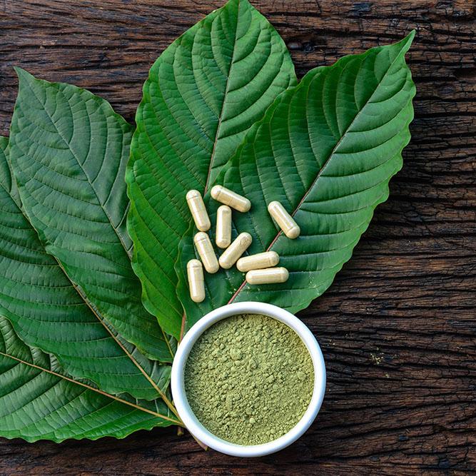 Kratom Leaf, Kratom Powder, Kratom Capsules